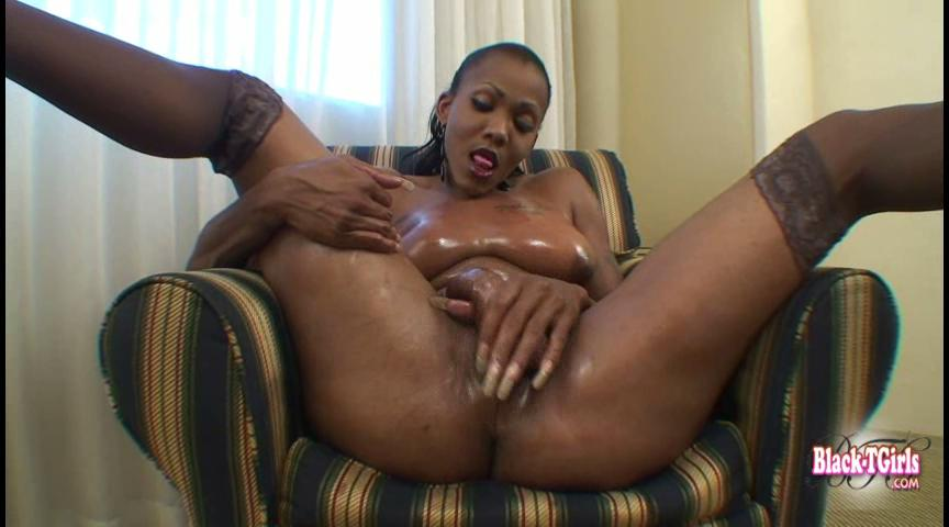 Black tranny free movies