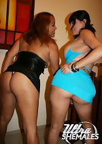 Two Shemale Sluts ready to Party showing their dicks and asses