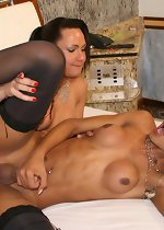 Tranny heaven, hung black shemales