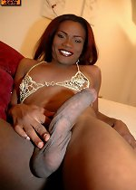 Hot shemale, free transexual pics
