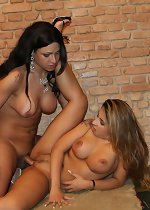 Shemale free videos, black shemale pictures